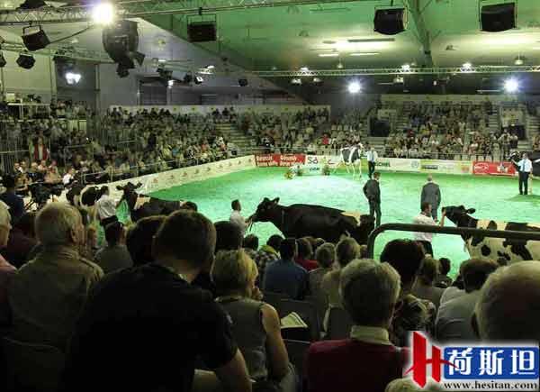 京鹏畜牧 养猪场养牛场牧场建设设计规划,养殖场牛场猪场设