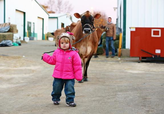牧场建设设计规划 养猪场养牛场猪舍牛舍施工建造养殖场设备销售安